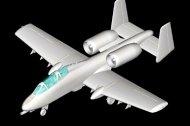 Hobby Boss N/AW A-10A Thunderbolt II