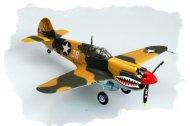 Hobby Boss P-40E KITTY HAWK