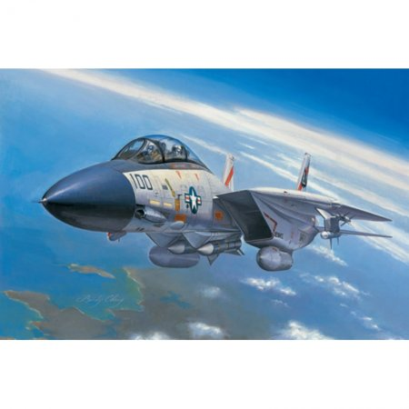 Hobby Boss F-14A Tomcat