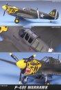 Academy P-40E Warhawk